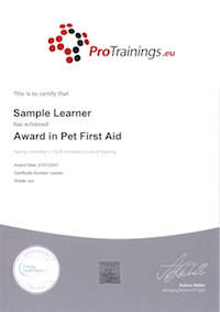 Pet First Aid Course Online - Learn to Care for your Dog, Cat or Pet